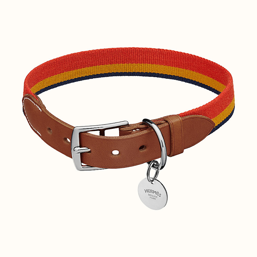 hermes-dog-collar-hot-list-must-haves-to-buy-this-month